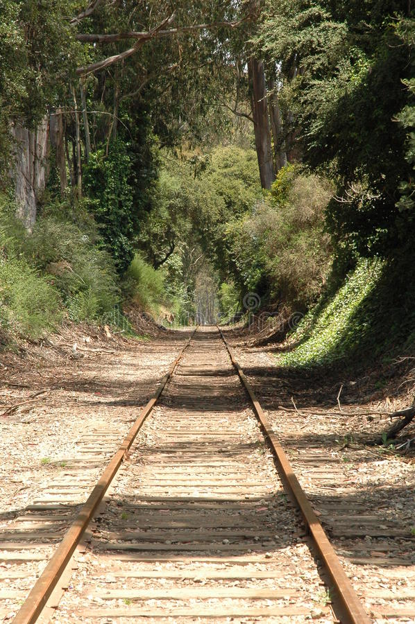 Addestri le piste che entrano in distanza fotografie stock libere da diritti
