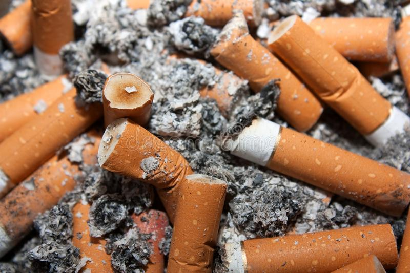 Addicted to smoking. Close up shot of used cigarettes, presenting addiction and health risk royalty free stock photo
