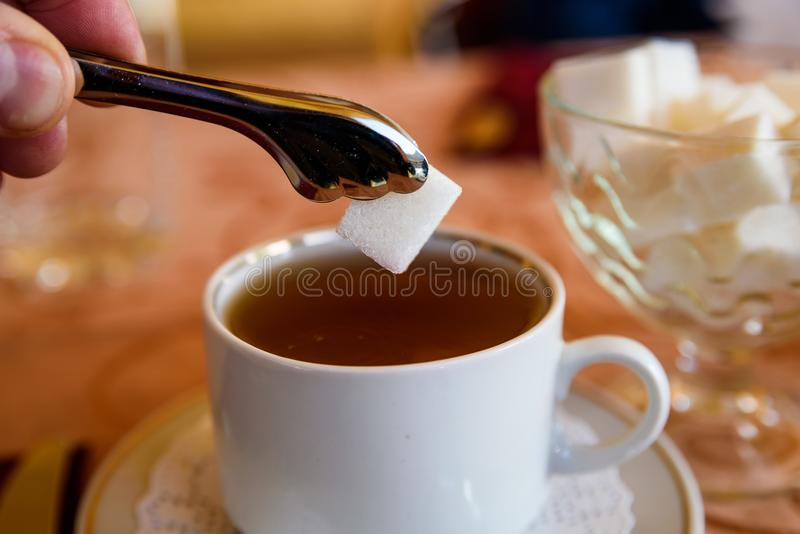 Adding lump of sugar with tweezers to tea in cup royalty free stock image