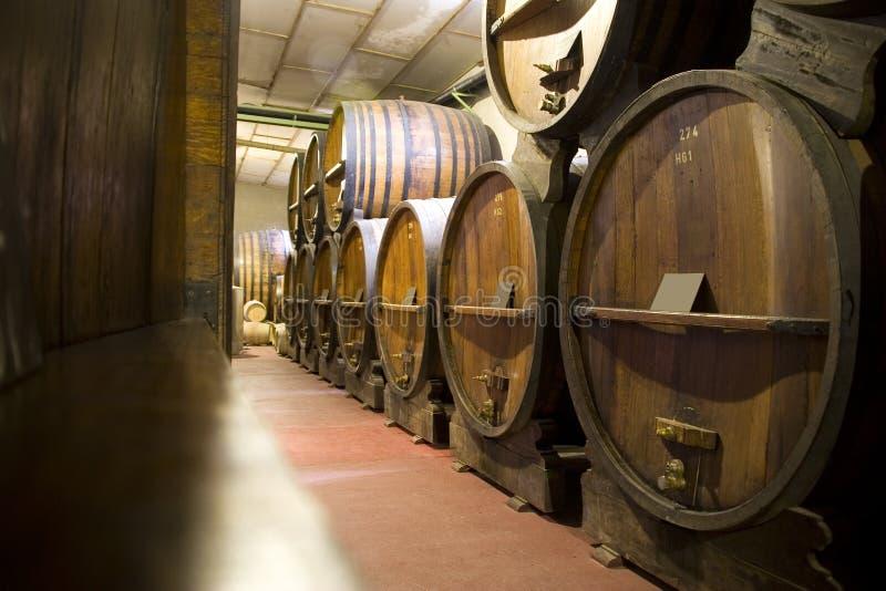 Adega de vinho de Argentina imagens de stock