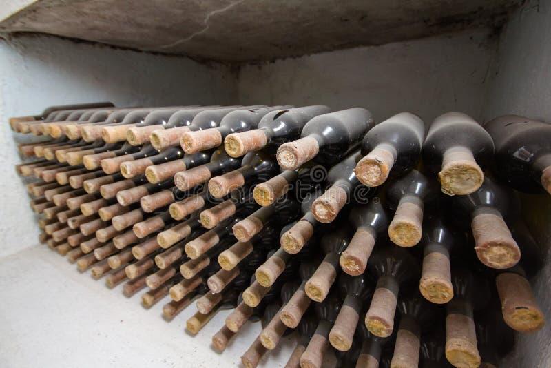 Adega de vinho, uma fileira das garrafas fotos de stock royalty free