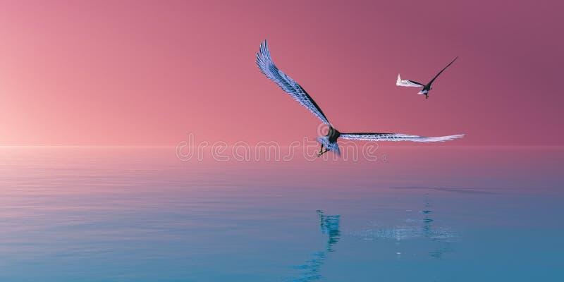 adelaar die gelijk met water vliegen royalty-vrije stock afbeeldingen