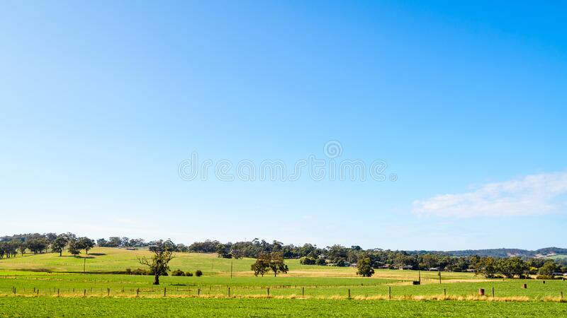 Adelaide Hills farmlands, South Australia. Adelaide Hills farmlands under blue sky on a bright day, South Australia royalty free stock photos