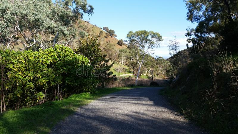 Adelaide Hills-het lopen sleep stock foto