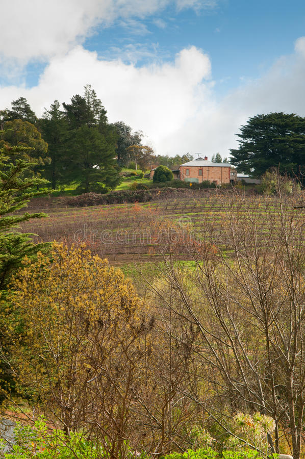 Adelaide Hills stock images