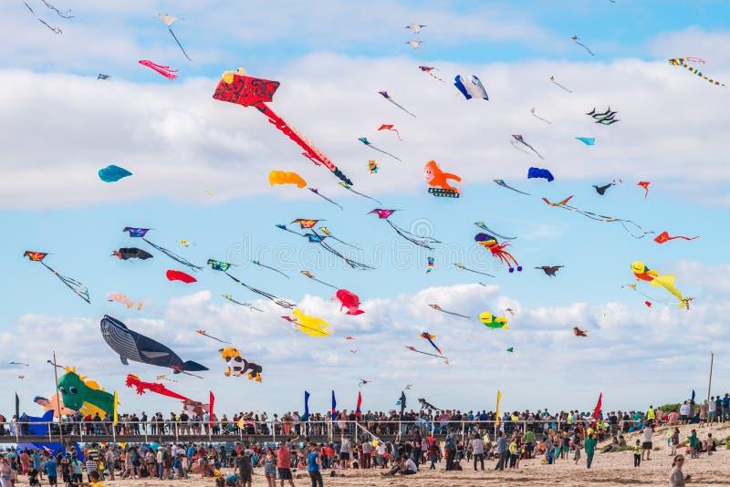 Adelaide International Kite Festival 2016 imagem de stock royalty free