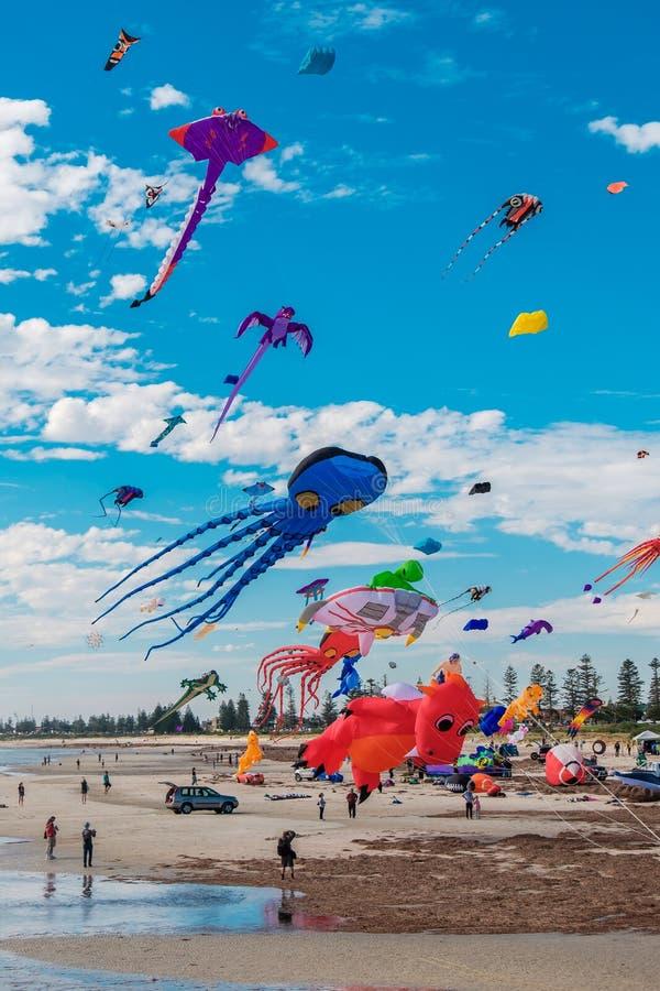 Adelaide International Kite Festival fotografia de stock