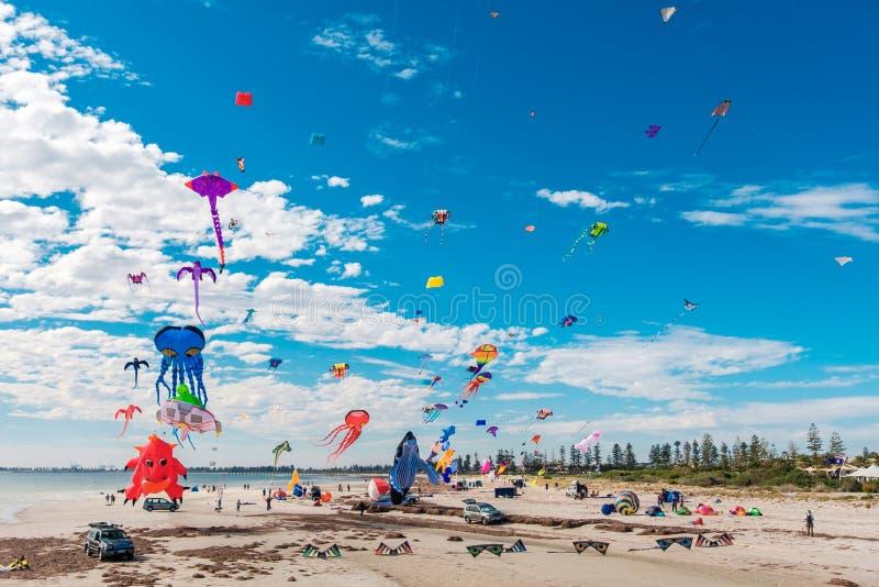 Adelaide International Kite Festival imagem de stock royalty free