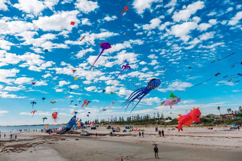 Adelaide International Kite Festival fotos de stock