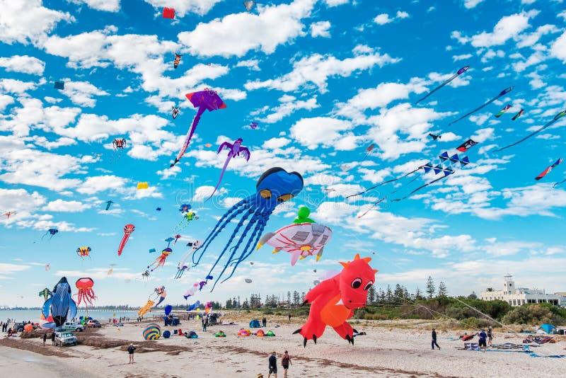 Adelaide International Kite Festival imagens de stock royalty free