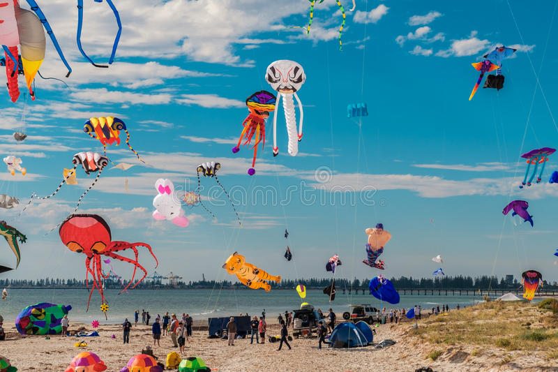 Adelaide International Kite Festival fotos de stock royalty free