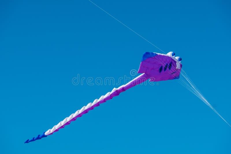 Adelaide International Kite Festival, SA imagens de stock