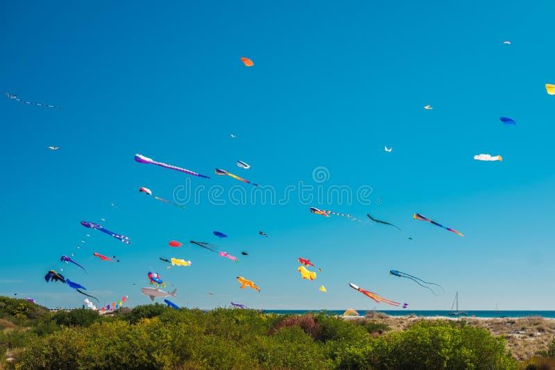 Adelaide International Kite Festival, SA fotografia de stock royalty free
