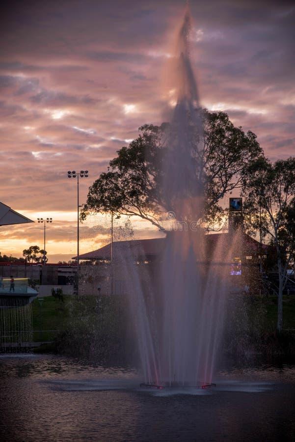 Adelaide - un parque más viejo - tarde foto de archivo