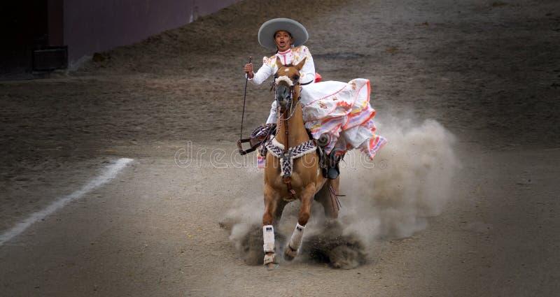 Adelita mexicano que para repentinamente su caballo imagen de archivo libre de regalías