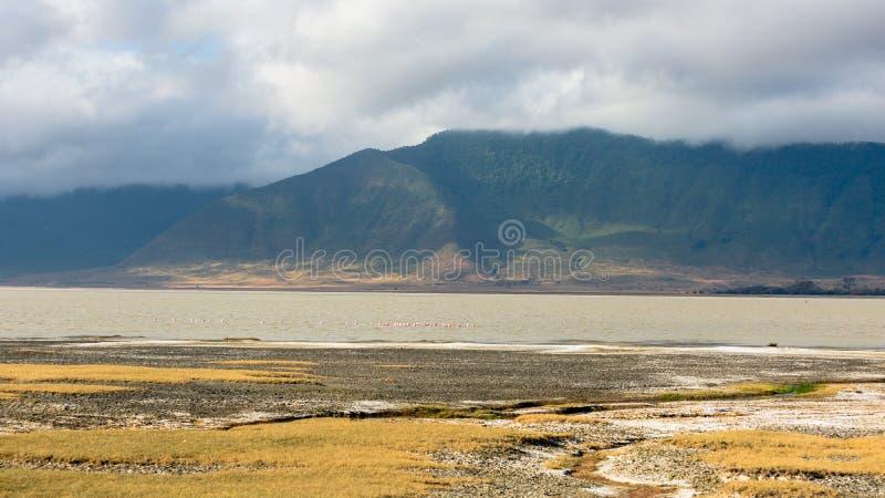 Adembenemend Landschap met mistige groene bergen in Ngorongoro, Tanzania royalty-vrije stock fotografie