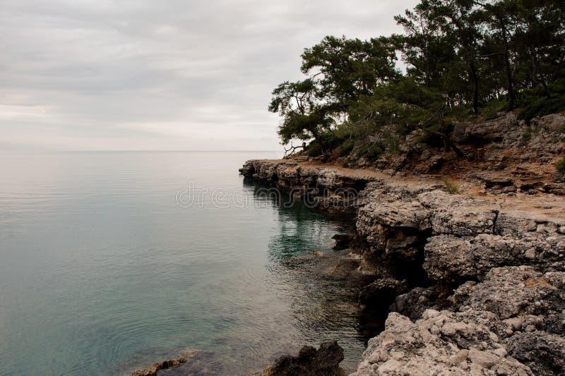 Adembenemend landschap op de rotsachtige zeekust met groene bomen stock afbeeldingen
