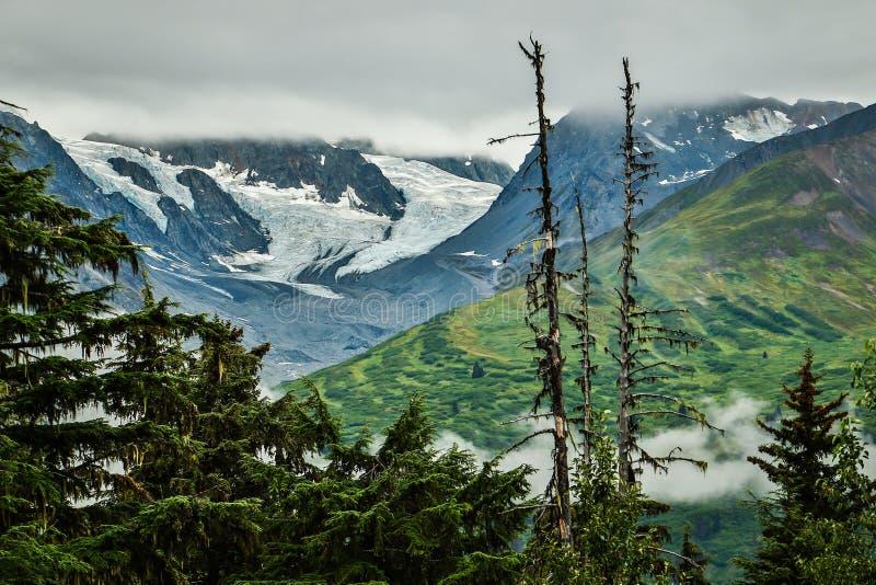 Adembenemende Gletsjermening tussen Haines-nad Haines Junction stock afbeeldingen