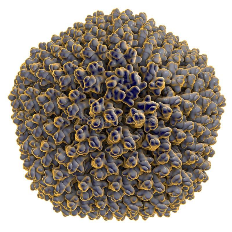 Adenovirus, un virus que causan infecciones respiratorias stock de ilustración