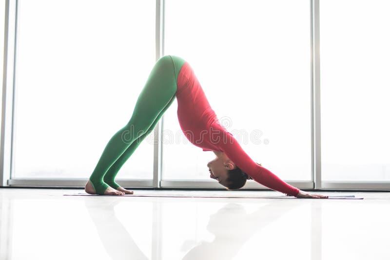 Adho mukha svanasana. Beautiful yoga woman practice down dog yoga poses in a big window hall. Background. Yoga concept royalty free stock image