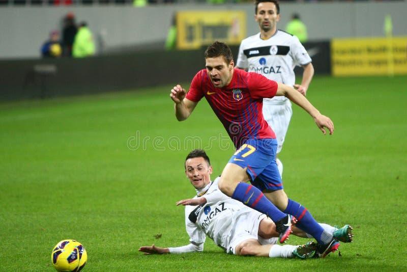 Download FC Steaua Bucharest- FC Gaz Metan Medias Editorial Stock Photo - Image of fans, cheering: 30038153