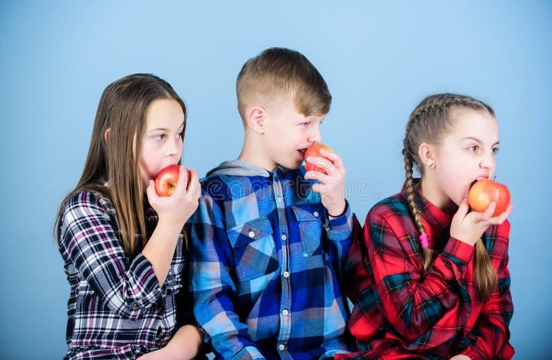 Adición de las vitaminas en menú de los niños Los pequeños niños gozan el comer de las manzanas llenas de vitaminas Poco niños qu fotos de archivo
