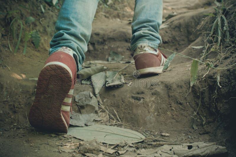 Adidas που περπατά την περιπέτεια βουνών, εθνικό πάρκο Ramkhamhaeng της Ταϊλάνδης στοκ εικόνες