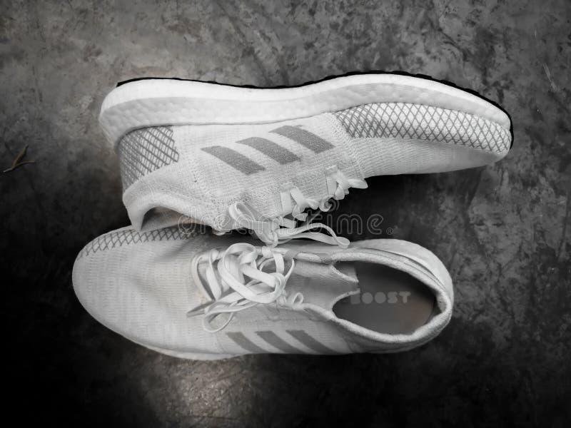 ADIDAS ULTRA AMPLIFICA, scarpe bianche e grige su un fondo ceramico nero immagine stock