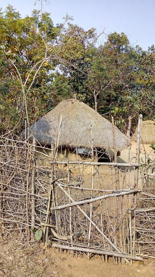 Adivasi house in jungle. stock photo