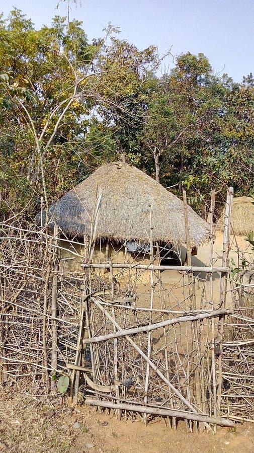 Adivasi hus i djungel arkivfoto