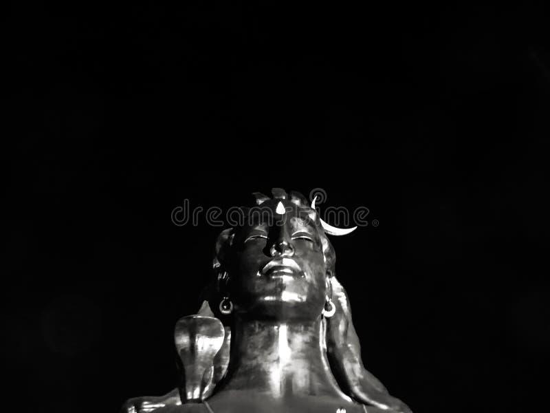 64 adiyogi photos free royalty free stock photos from dreamstime dreamstime com