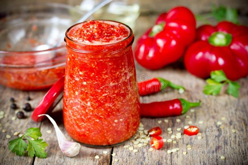Adjika e ingredientes georgianos calientes crudos de la salsa imágenes de archivo libres de regalías