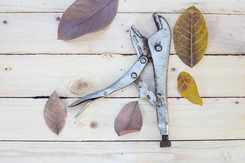 Adjustable pliers and leaves on white wood table. Adjustable pliers and leaves on white wooden background royalty free stock image