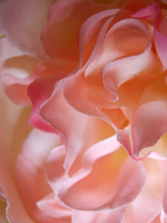 Abstract Fabric Rose Roses Rainbow. Adjusted contrast saturation and sharpened stock image