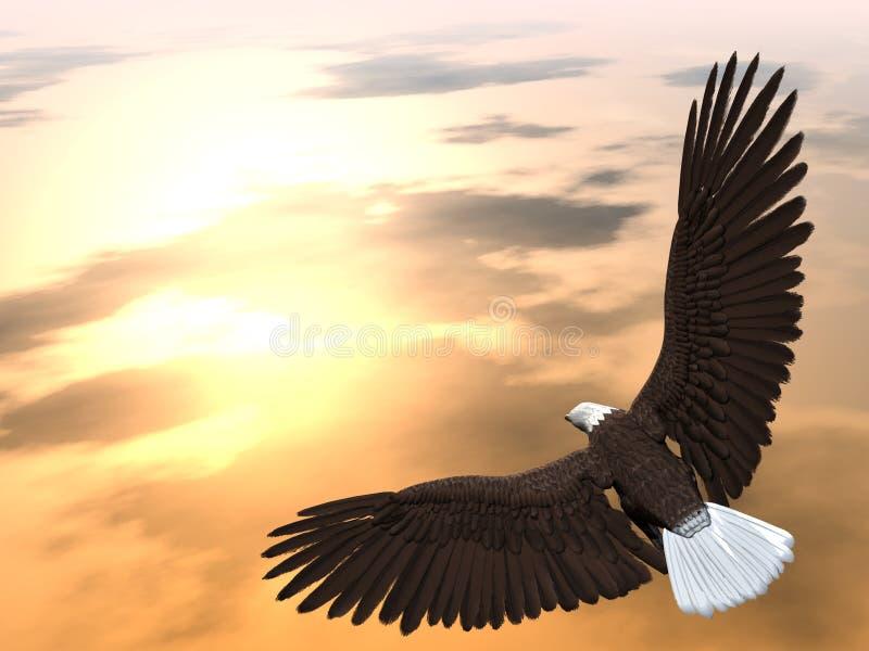 Adler-Ansteigen stock abbildung
