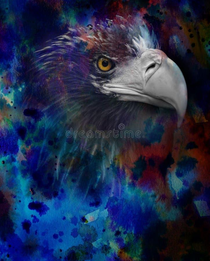 Adlerkopf auf einem Aquarellhintergrund stockfotografie