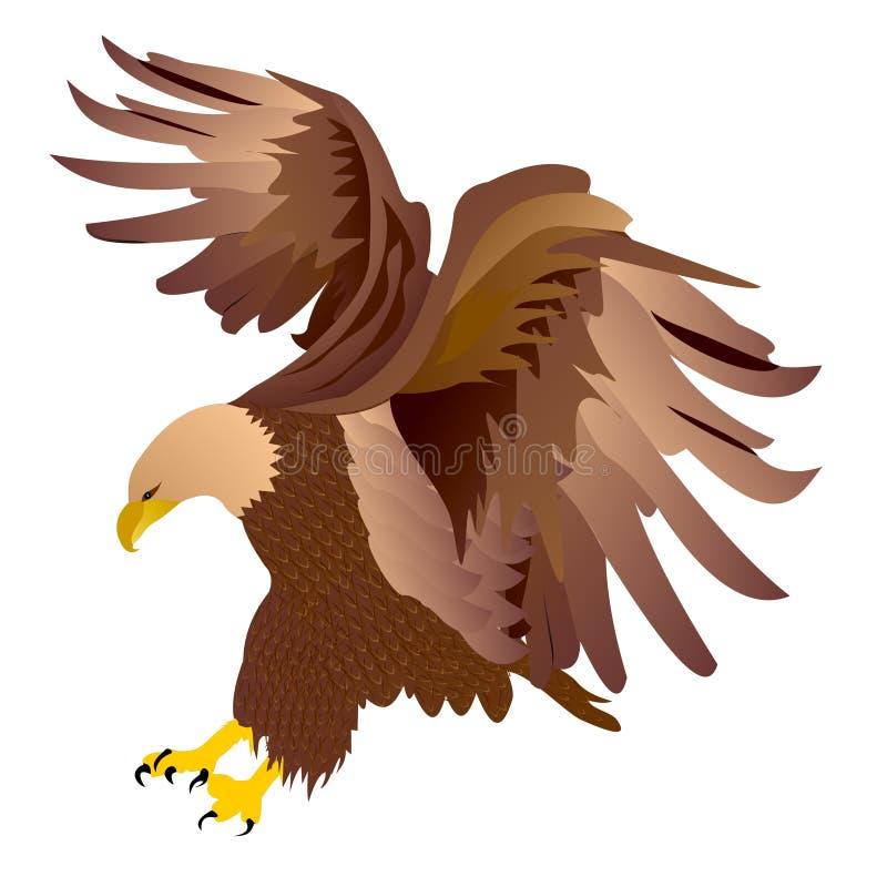 Eagle-Vektor lizenzfreie stockfotografie
