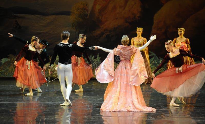 A admiré la reine et le lac swan de prince-ballet image libre de droits
