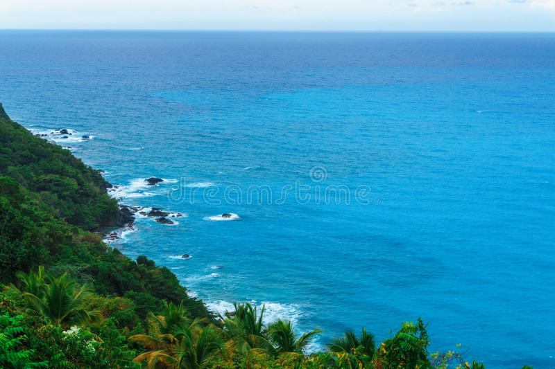 Admirable natural wild landscape with rocky mountains overgrown dense green jungle tree, palm and clear azure water of sea ocean. Dominican Republic royalty free stock photos