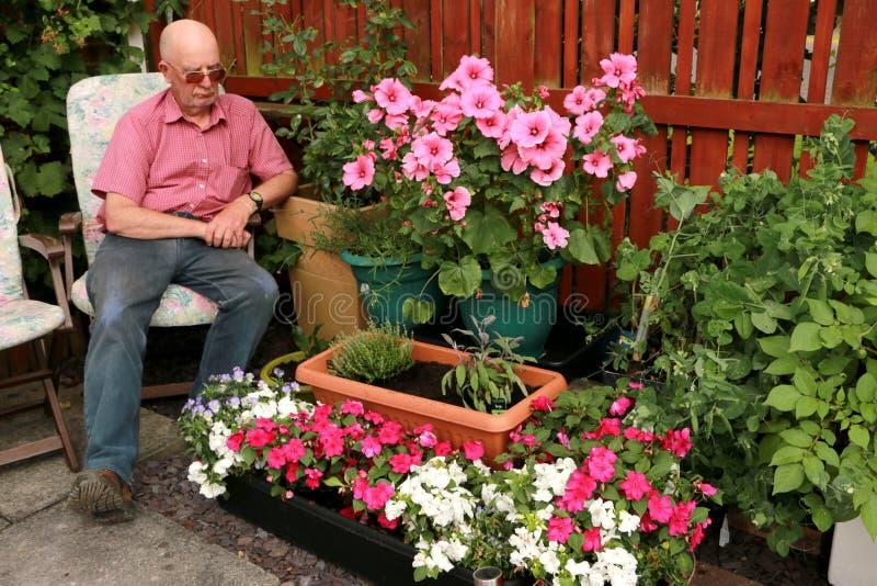 Admirando o jardim do pátio fotografia de stock royalty free