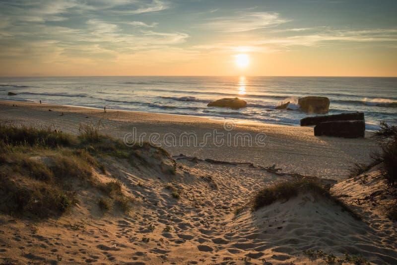 Admirando o por do sol cênico no fundo alaranjado amarelo azul do céu na costa atlântica, capbreton foto de stock royalty free