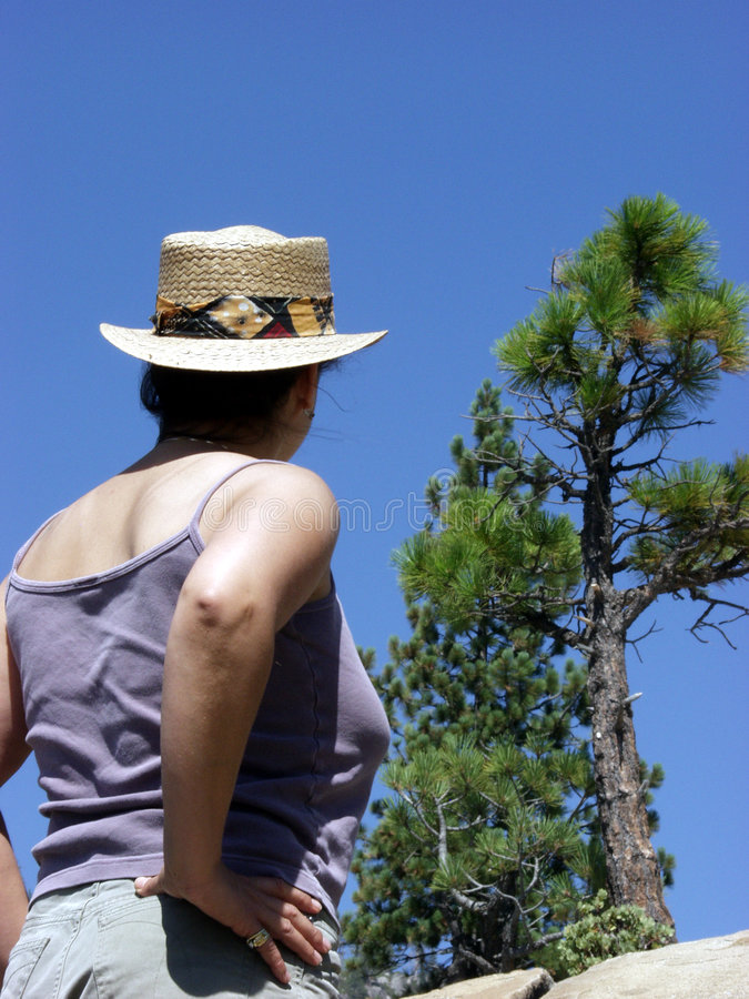 Download Admiring Nature Stock Image - Image: 63981