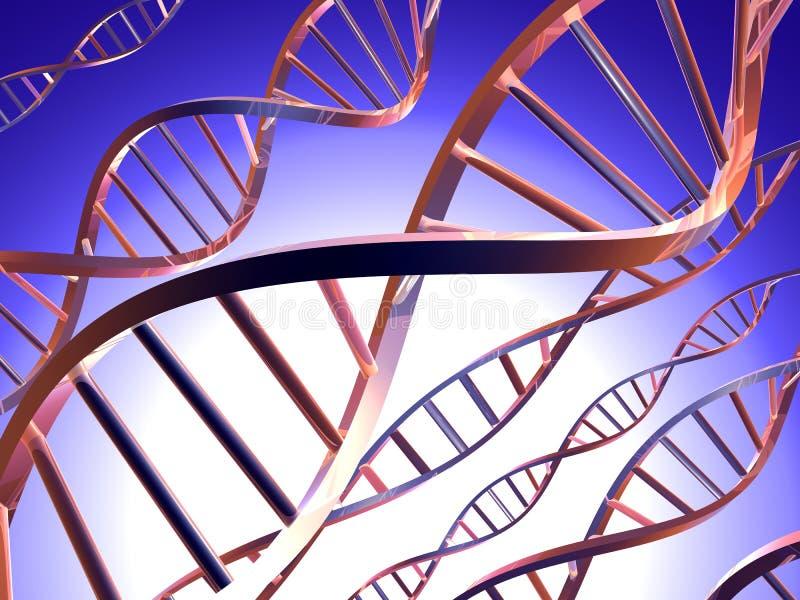ADN 1 illustration stock