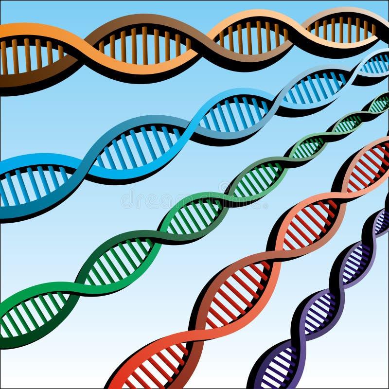 ADN illustration stock