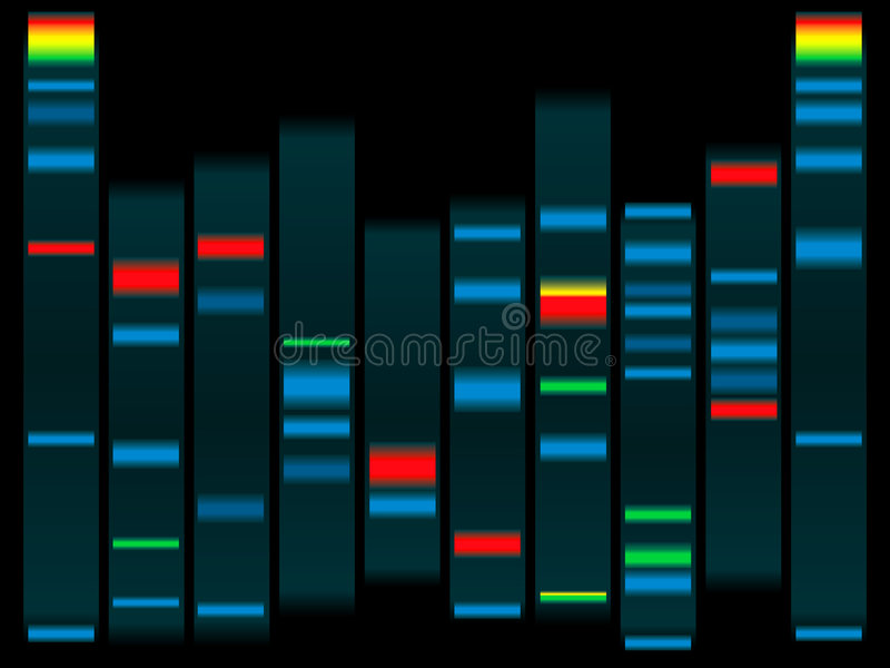 ADN illustration de vecteur