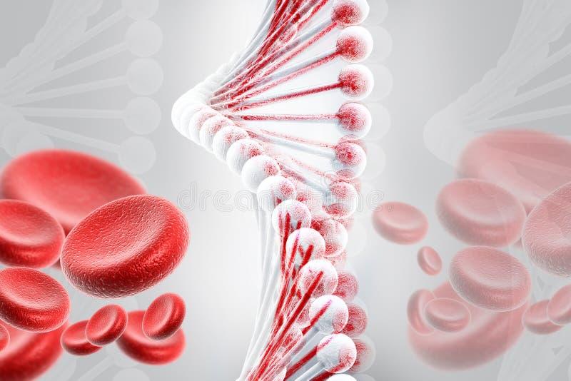 ADN avec des globules sanguins illustration de vecteur