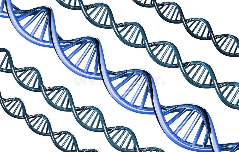 ADN azul proeminente, gene dominante, isolado no fundo branco, 3d rendido ilustração royalty free