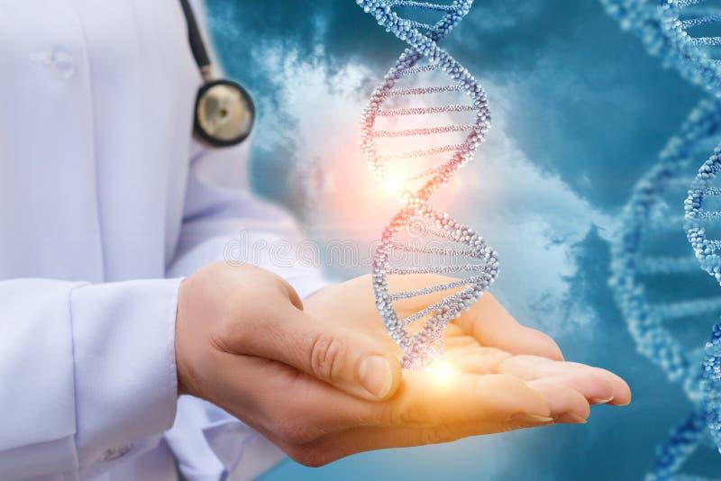 ADN dans les mains d'un docteur images stock