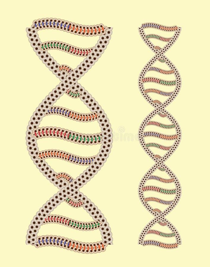 ADN do vetor como o ornamento grego ilustração royalty free
