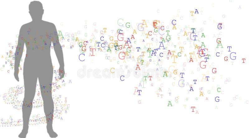 Download ADN e homem ilustração stock. Ilustração de engenharia, isolado - 62430
